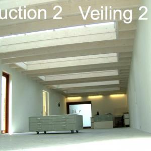 online Veiling 2
