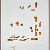 """Milah van Zuilen, 2021, """"De Valouwe; distribution of Rhodondendron luteum"""""""
