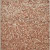 """Milah van Zuilen, 2020, """"Oak-beech forest floor"""""""